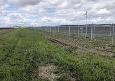chainlink field